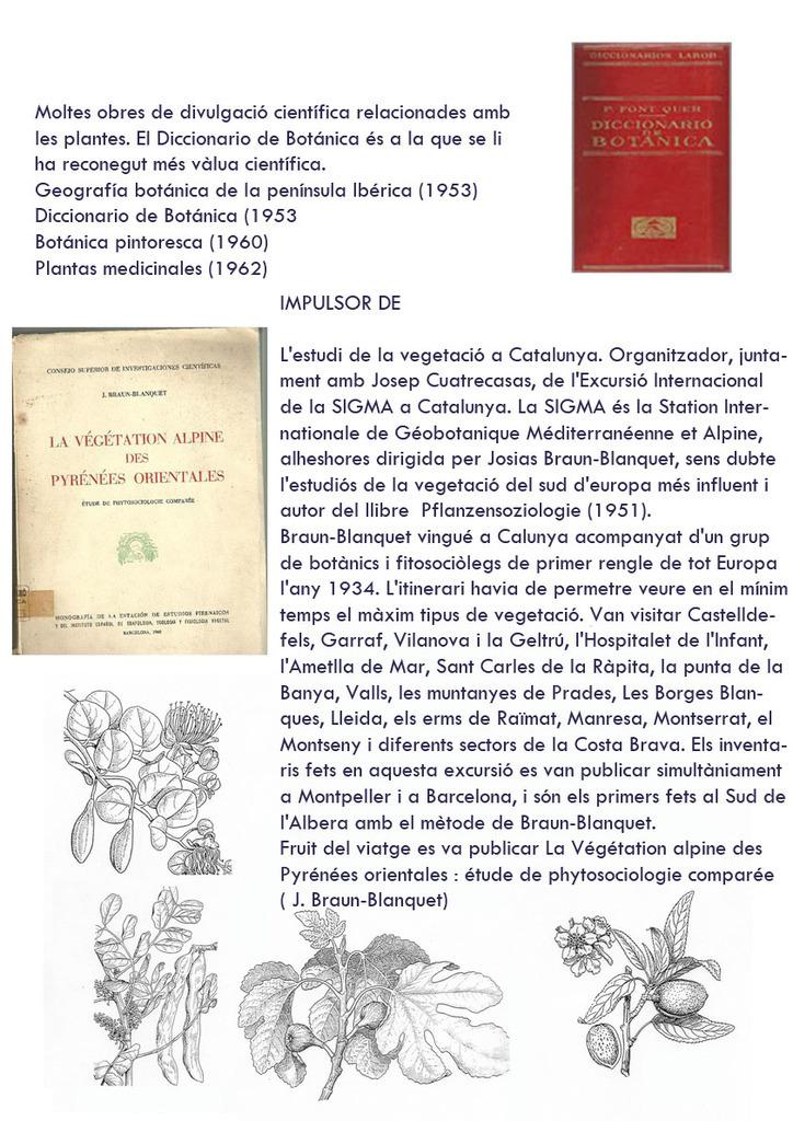 Pius-Font-i-Quer-4.jpg